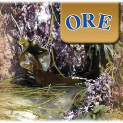ORE Skin and Body Care